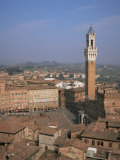 Piazza Del Campo and Mangia Tower, Unesco World Heritage Site, Siena, Tuscany, Italy Photographic Print by Roy Rainford