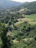 Colli Bolognesi, Emilia Romagna, Italy Photographic Print by Michael Newton