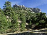 Sierra De Cazorla, 2000M, Cazorla National Park, Jaen Province, Andalucia, Spain Photographic Print by Duncan Maxwell