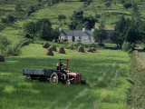 Croft with Hay Cocks and Tractor, Glengesh, County Donegal, Eire (Republic of Ireland) Photographic Print by Duncan Maxwell