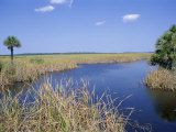 Everglades National Park, Unesco World Heritage Site, Florida, USA Photographic Print by J Lightfoot