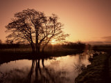 Sunrise Over the River Wey, Send, Surrey, England, United Kingdom Photographic Print by Roy Rainford