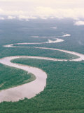 Aerial View of River and Forest, West Irian (Irian Jaya). Indonesia, Southeast Asia Photographic Print by Claire Leimbach