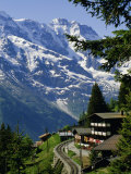 Alpine Railway, Murren, Jungfrau Region, Bernese Oberland, Swiss Alps, Switzerland Fotografisk tryk af Roy Rainford