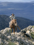 Man on Horse with Dogs, 'The Man from Snowy River', Victoria, Australia Photographic Print by Claire Leimbach