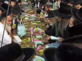 Crowd of Orthodox Jews Buying the Etrog for the Lulav, Four Types Market, During Sukot, Israel Photographic Print by Eitan Simanor