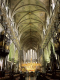 Interior of Worcester Cathedral, Worcester, Hereford & Worcester, England, United Kingdom Photographic Print by Roy Rainford