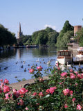 Stratford-Upon-Avon, Warwickshire, England, United Kingdom Fotografisk tryk af Roy Rainford