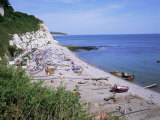 Beach and Cliffs, Beer, Devon, England, United Kingdom Photographic Print by Roy Rainford