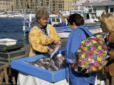 Fish Market, Vieux Port, Marseille, Bouches Du Rhone, Provence, France Photographic Print by Roy Rainford