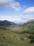 Ladies View, Ring of Kerry, Killarney, County Kerry, Munster, Eire (Republic of Ireland) Fotografie-Druck von Roy Rainford