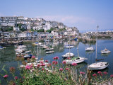 Brixham Harbour, Devon, England, United Kingdom Photographic Print by Roy Rainford