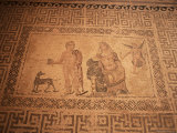 Mosaic, House of Dionysos, Paphos, Cyprus Photographic Print by John Miller