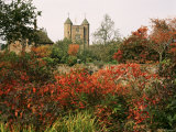 Autumn, Sissinghurst Castle, Kent, England, United Kingdom Photographic Print by John Miller