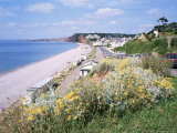 Budleigh Salterton, Devon, England, United Kingdom Photographic Print by Roy Rainford