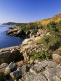 Coastline, Acadia National Park, Maine, New England, USA Photographic Print by Roy Rainford