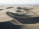 Sand Dunes, Maspalomas, Gran Canaria, Canary Islands, Spain Fotografisk tryk af Roy Rainford