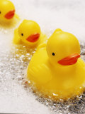 Rubber Ducks in Bath Photographic Print by John Miller