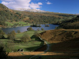 Rydal Water, Lake District National Park, Cumbria, England, United Kingdom Fotografisk tryk af Roy Rainford