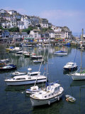 Harbour, Brixham, South Devon, England, United Kingdom Photographic Print by Roy Rainford