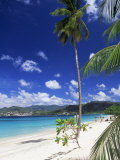 Grand Anse Beach, Grenada, Windward Islands, West Indies, Caribbean, Central America Photographic Print by John Miller