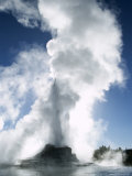 Castle Geyser, Upper Geyser Basin, Yellowstone National Park, Wyoming Photographic Print by Roy Rainford