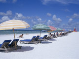 Beach, Longboat Key, Sarasota, Florida, USA Photographic Print by John Miller