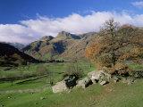 Langdale Pikes from Great Langdale, Lake District National Park, Cumbria, England Fotografisk tryk af Roy Rainford