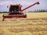 Combine Harvester in Field, Nottinghamshire, England, United Kingdom Photographic Print by Mark Mawson