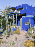 Jardin Majorelle, Marrakech (Marrakesh), Morocco, North Africa, Africa Photographic Print by Bruno Morandi