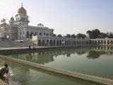 Sikh Pilgrim Bathing in the Pool of the Gurudwara Bangla Sahib Temple, Delhi, India Reprodukcja zdjęcia autor Eitan Simanor