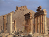 The Great Colonnade, with Arab Castle on Hill in Background, Palmyra, Syria Photographic Print by S Friberg
