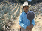 Tequila Plantation Worker, Mexico, North America Photographic Print by Michelle Garrett
