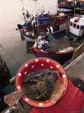 Fish and Fishing Boats, France Photographic Print by Michelle Garrett