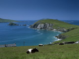 County Kerry, Munster, Eire (Republic of Ireland) Photographic Print by Simon Harris