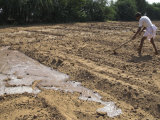 Farmer Working in Bare Field, with Flood Irrigation, Village of Borunda, Rajasthan State, India Photographic Print by Eitan Simanor