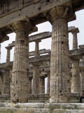 Paestum, Campania, Italy Photographic Print by John Ross