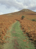 The Sugar Loaf, in Autumn, Black Mountains Near Abergavenny, Monmouthshire, Wales Photographic Print by David Hunter
