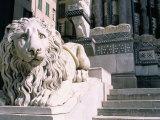 Lion, San Lorenzo Cathedral, Genoa (Genova), Liguria, Italy Photographic Print by Bruno Morandi