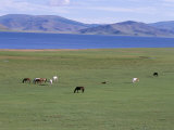 Lake Terkhiin Tsagaan Nuur, Volcanic Region of Khorgo, Arkhangai, Mongolia, Central Asia Photographic Print by Bruno Morandi