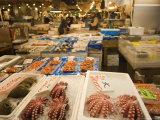 Fish Stall, Tsukiji Fish Market, Tsukiji, Tokyo, Japan Photographic Print by Christian Kober