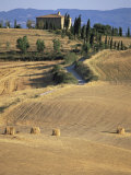 Rolling Landscape in Siena Province, Tuscany, Italy Photographic Print by Bruno Morandi
