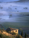 Montalcino, Tuscany, Italy Photographic Print by Bruno Morandi
