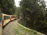 Mountain Railway Train to Alishan, Alishan National Forest Recreation Area, Taiwan Photographic Print by Christian Kober