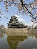 Cherry Blossoms, Matsumoto Castle, Matsumoto City, Nagano Prefecture, Honshu Island, Japan,Asia Photographic Print by Christian Kober