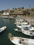 Boats in Old Port Harbour, Byblos, Lebanon, Middle East Photographic Print by Christian Kober