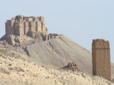 Qala'At Ibn Maan Citadel Castle, Palmyra, Syria, Middle East Photographic Print by Christian Kober