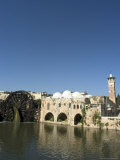 Mosque and Water Wheels on the Orontes River, Hama, Syria, Middle East Photographic Print by Christian Kober