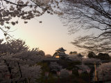 Sunset, Cherry Blossom, Kanazawa Castle, Kanazawa City, Ishigawa Prefecture, Honshu Island, Japan Photographic Print by Christian Kober