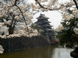 Cherry Blossoms, Matsumoto Castle, Matsumoto City, Nagano Prefecture, Honshu Island, Japan Photographic Print by Christian Kober